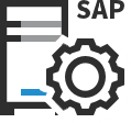 icon-sap-erp-security